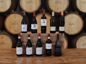 Spier wines Rated 90+