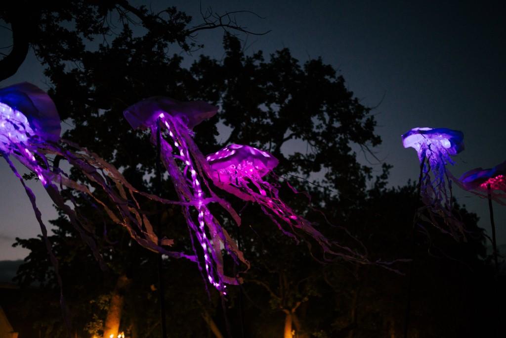 Spier Light Art Show 02