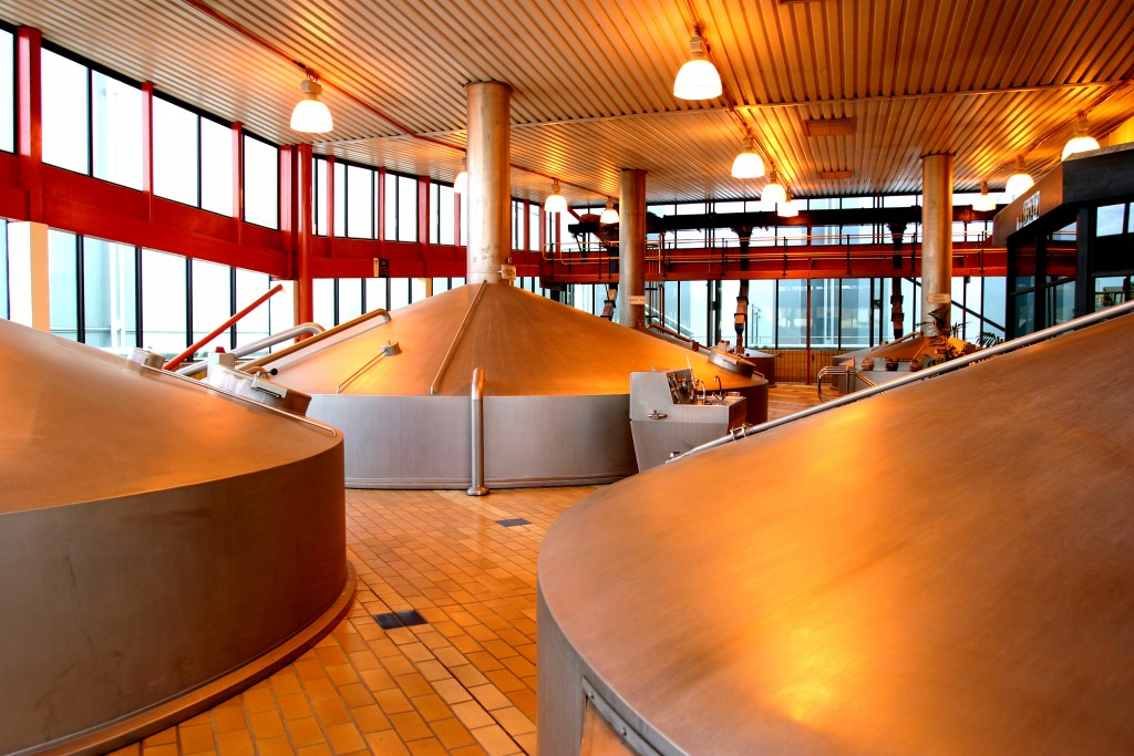 Modern Brewhouse - Newlands Brewery