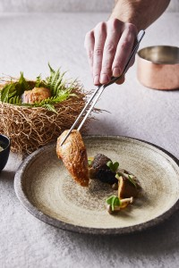 MagicMushroom Cinamon, mushroom, walnut xo, coriander pesto, sweetpotato angels nest, shitake broth