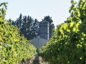 54_De Toren_Vineyard Tower_de.t._99